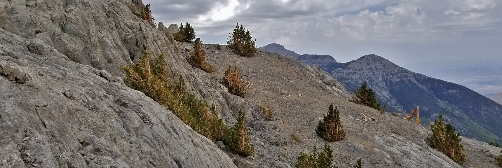 Base of Western Cliffs Looking Toward Charleston and Lee Peaks   Mummy Mountain Northern Rim Overlook, Spring Mountain Wilderness, Nevada