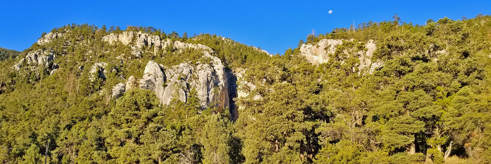 View from the Trailhead at Moonset | Robbers Roost and Beyond | Spring Mountains, Nevada
