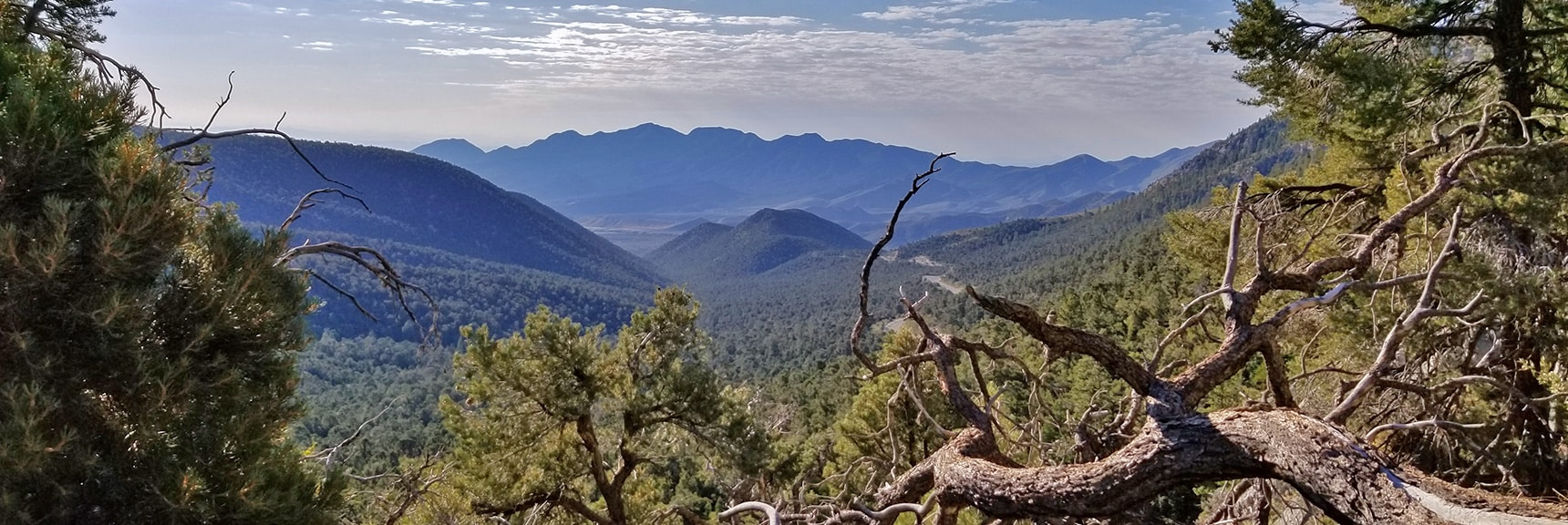 Morning View of La Madre Mountains Wilderness from Base of Robbers Roost Cliffs | Robbers Roost and Beyond | Spring Mountains, Nevada