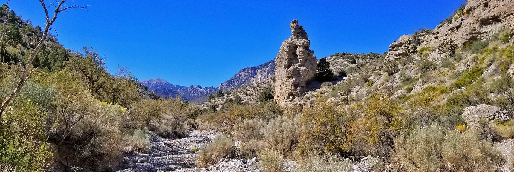 Elaborate Rock Formations in the Canyon. Charleston Peak Visible Ahead | Harris Springs Canyon | Biking from Centennial Hills | Spring Mountains, Nevada