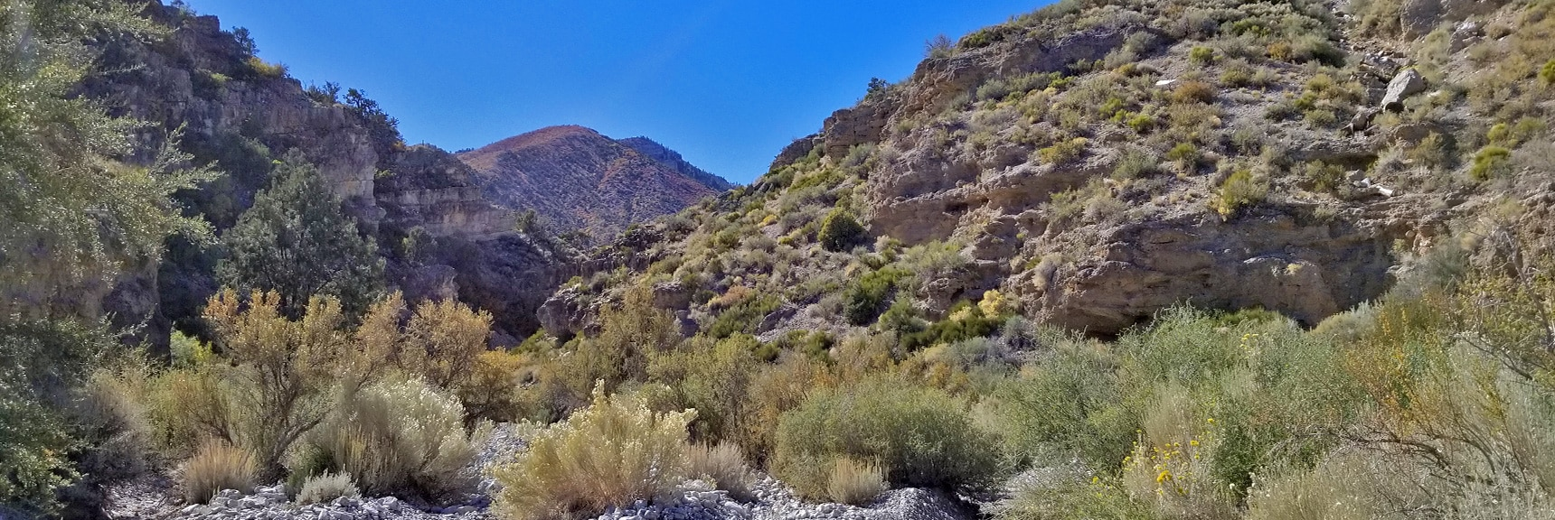 View toward Harris Mountain, Nearing the Upper Opening of the Canyon | Harris Springs Canyon | Biking from Centennial Hills | Spring Mountains, Nevada