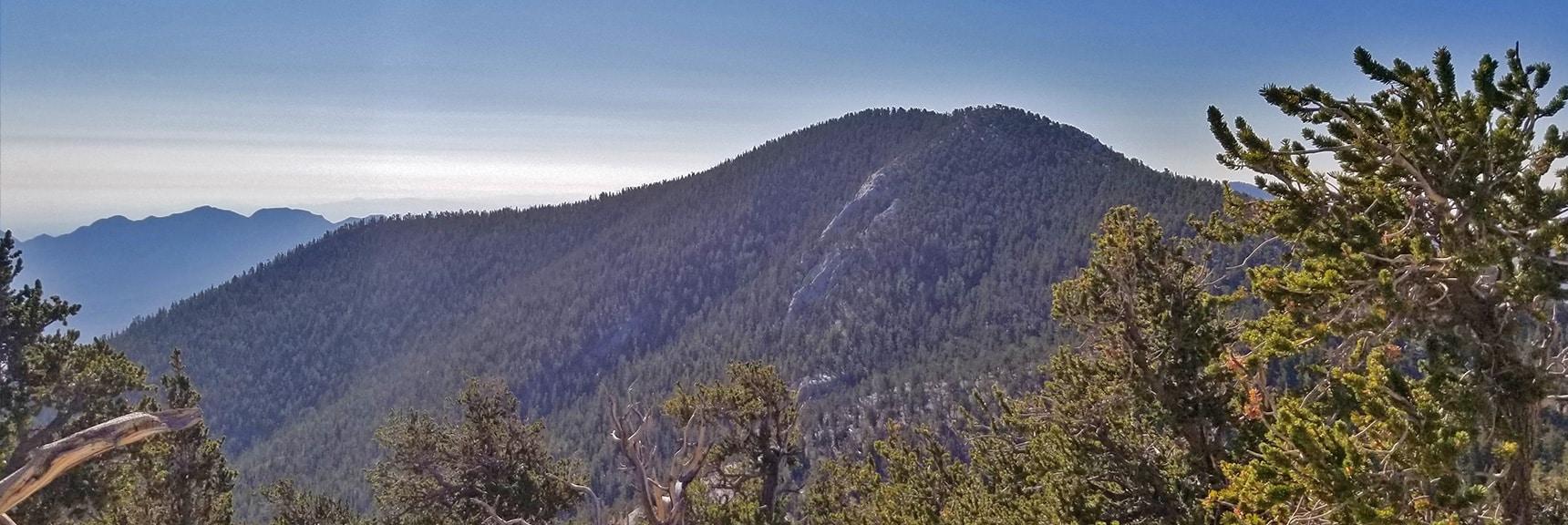 Fletcher Peak and La Madre Mountain Viewed from North Loop High Ridge | Mummy Springs Loop | Mt. Charleston Wilderness | Spring Mountains, Nevada