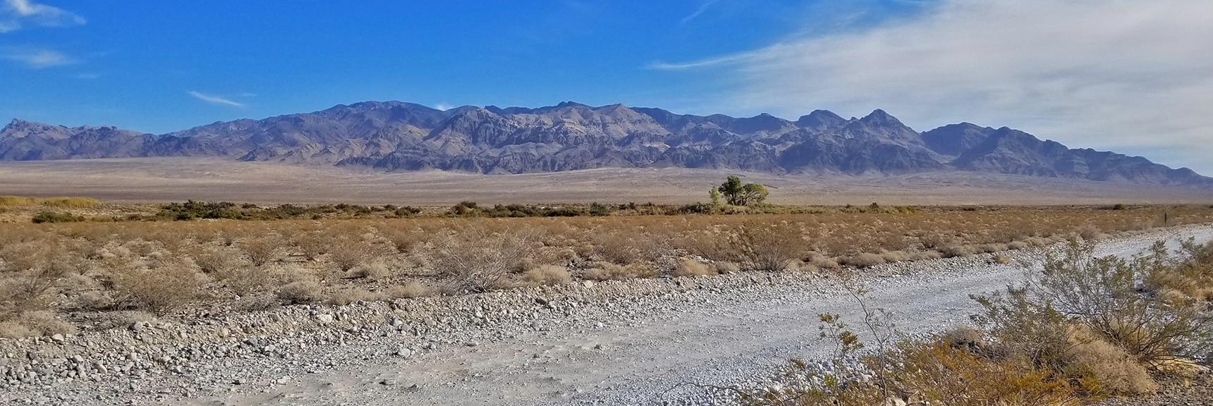 Looking Up Mormon Well Road Toward the Sheep Range | Smart Car Bike Rack and Mountain Bike Test, Sheep Range, Nevada