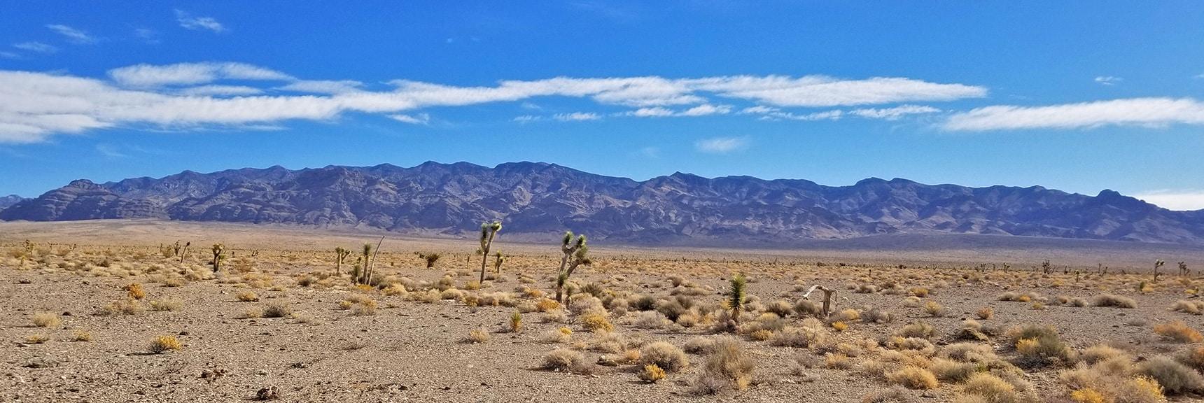 View Spanning the West Side of the Sheep Range from Alamo Road   Lower Alamo Road   Sheep Range   Desert National Wildlife Refuge, Nevada