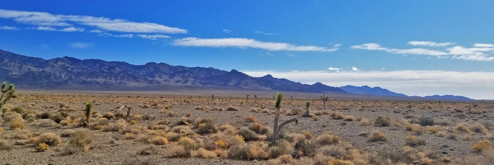 View of the Sheep Range from the Northwest corner to Gass Peak   Lower Alamo Road   Sheep Range   Desert National Wildlife Refuge, Nevada