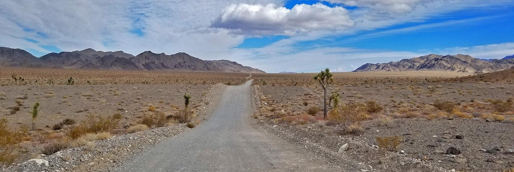 View Up Alamo Road Towards Sheep Pass Area   Lower Alamo Road   Sheep Range   Desert National Wildlife Refuge, Nevada