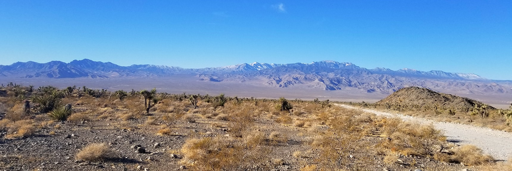 View Down Mormon Well Road Toward Mt. Charleston and La Madre Mountain Wilderness from Intersection of Mormon Well Road and Gass Peak Road | Gass Peak Road Circuit | Desert National Wildlife Refuge | Nevada
