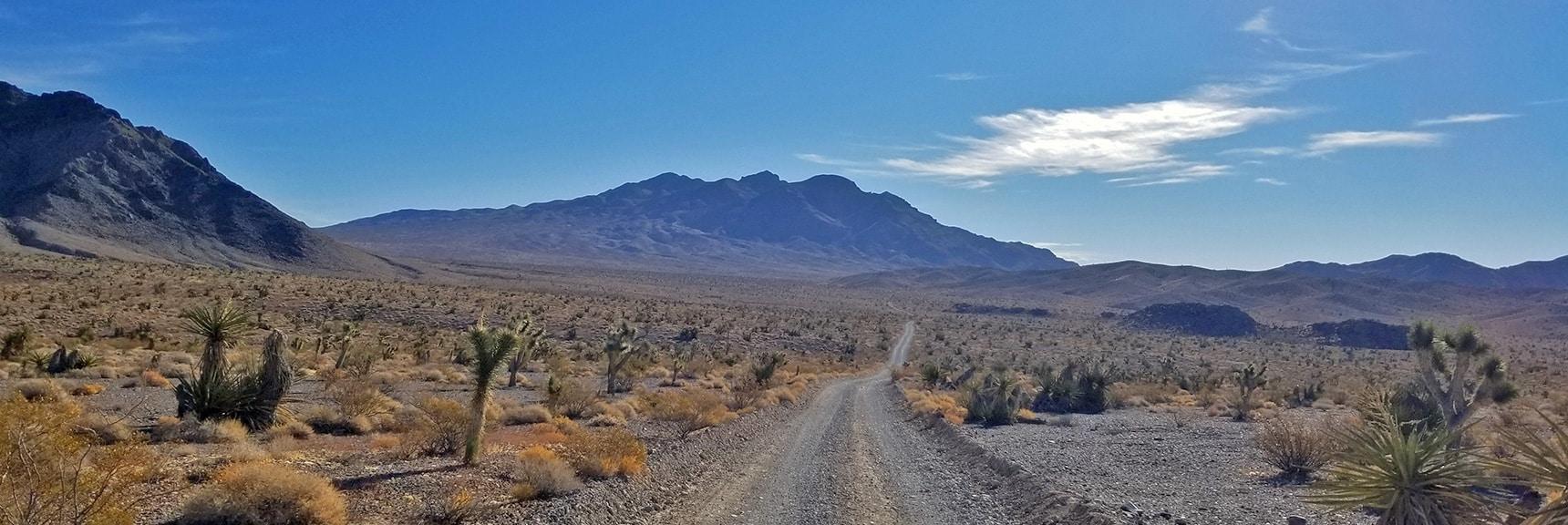 Skirting West Side of Fossil Ridge and Heading Toward Gass Peak on Gass Peak Road | Gass Peak Road Circuit | Desert National Wildlife Refuge | Nevada