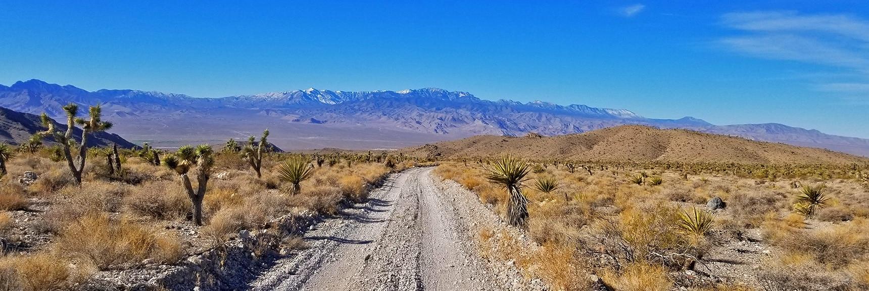 View Down Gass Peak Road Toward Mt. Charleston Wilderness | Gass Peak Road Circuit | Desert National Wildlife Refuge | Nevada