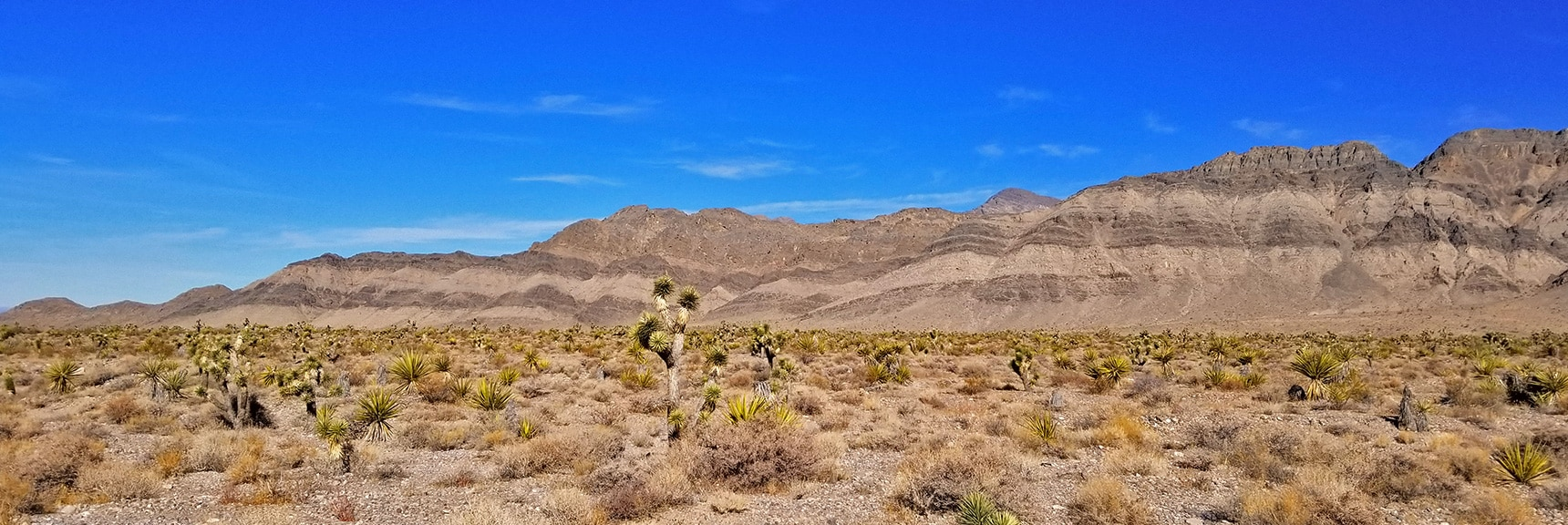 Southwest Side of Fossil Ridge from Gass Peak Road | Gass Peak Road Circuit | Desert National Wildlife Refuge | Nevada