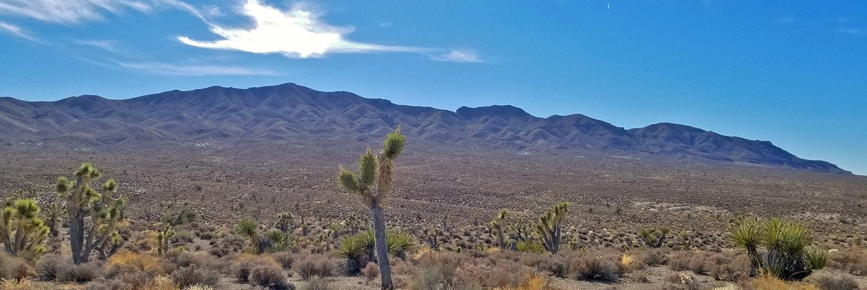 North Side of Gass Peak from Gass Peak Road | Gass Peak Road Circuit | Desert National Wildlife Refuge | Nevada