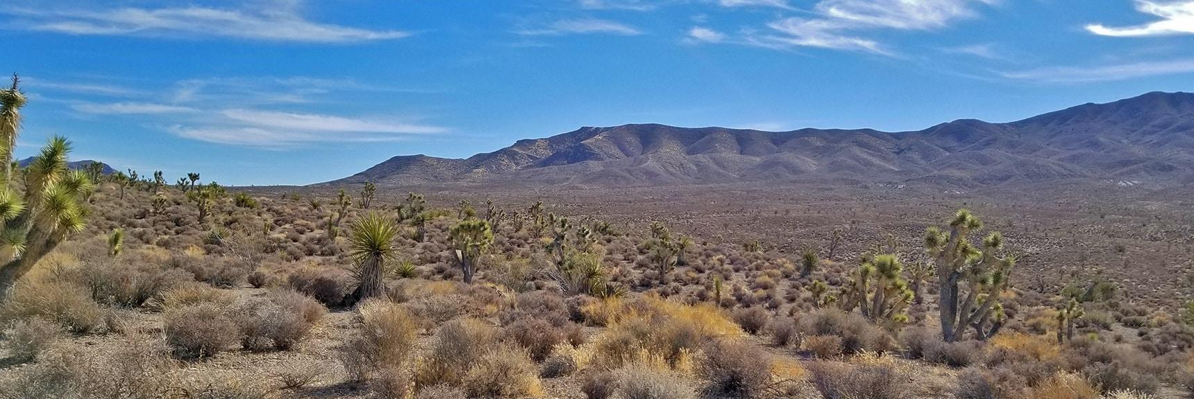 View Toward Northeastern Pass of Gass Peak from Gass Peak Road | Gass Peak Road Circuit | Desert National Wildlife Refuge | Nevada