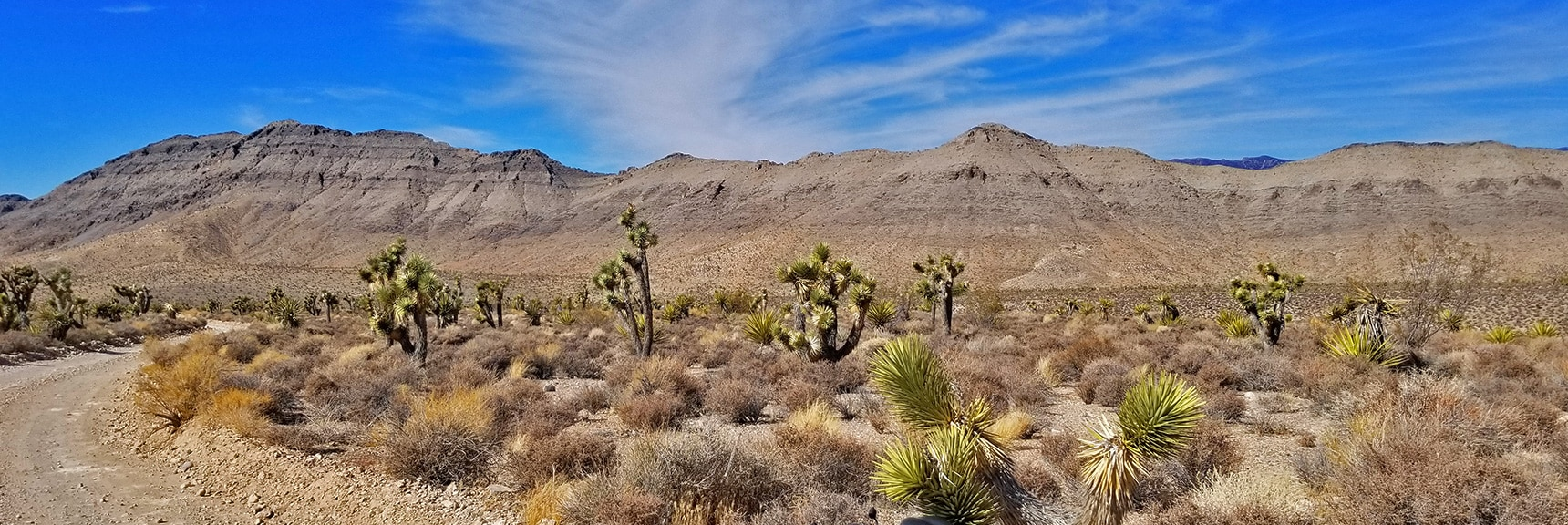 Fossil Ridge Viewed from Gass Peak Road Near Trailhead | Gass Peak Road Circuit | Desert National Wildlife Refuge | Nevada