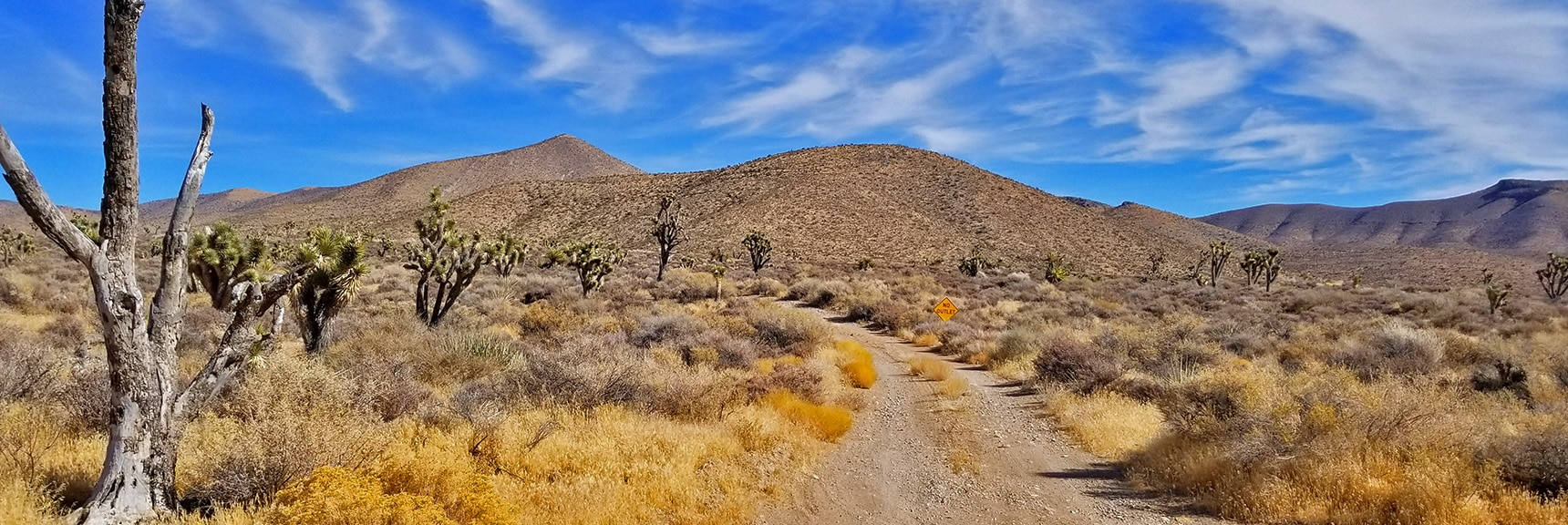 Gass Peak Road Beyond Trailhead.