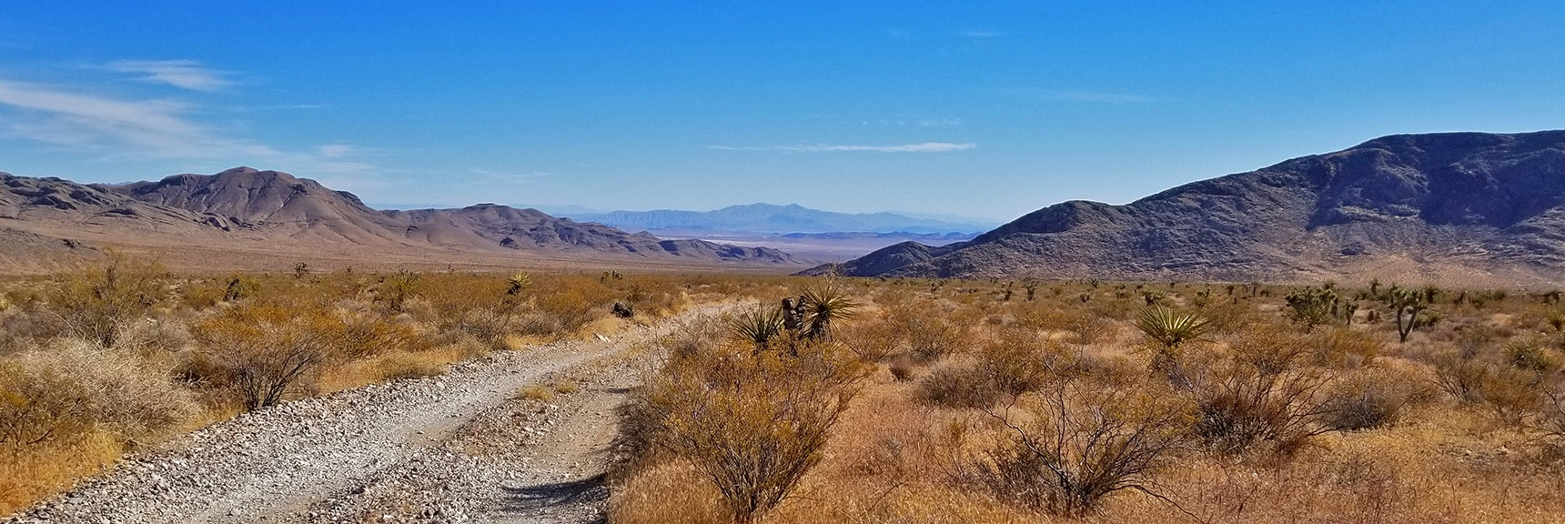 View Down Gass Peak Road Toward Hwy 93 and Valley of Fire Area | Gass Peak Road Circuit | Desert National Wildlife Refuge | Nevada