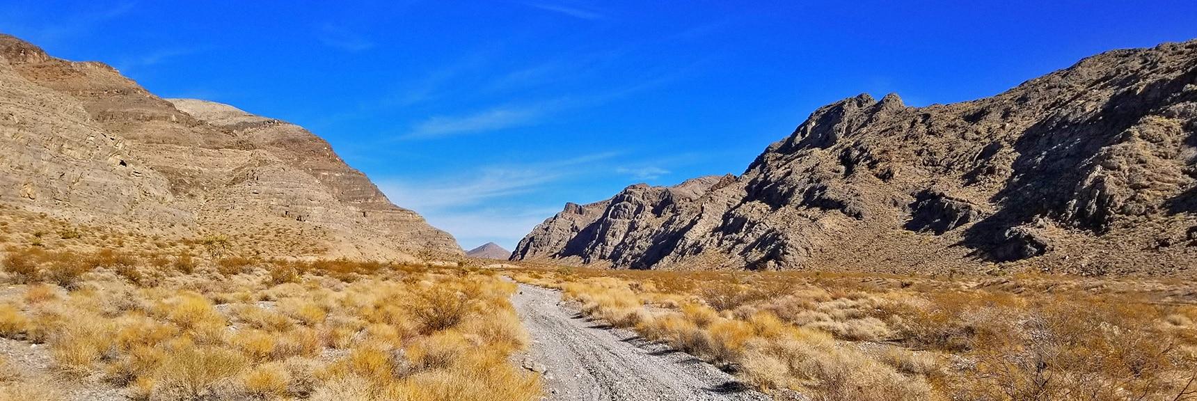View Back Up Gass Peak North Las Vegas Pass | Gass Peak Road Circuit | Desert National Wildlife Refuge | Nevada