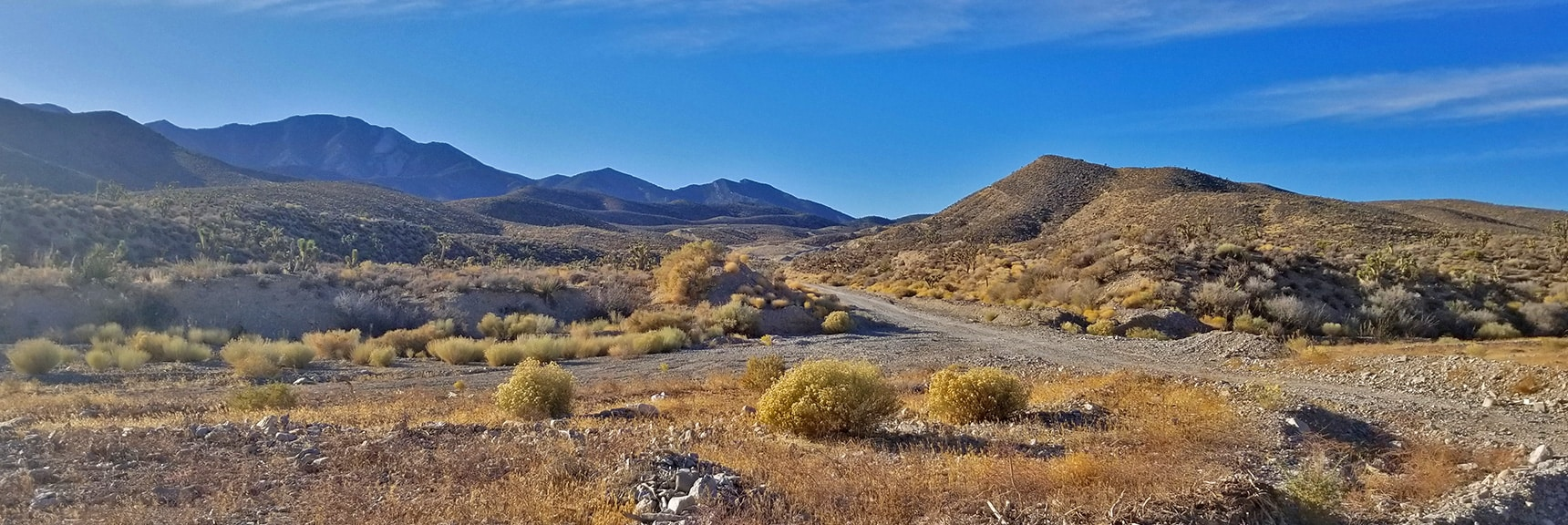 View Up Turnoff Toward Northern La Madre Mountains Wilderness Area   Harris Springs Rd, Harris Mountain Rd   Spring Mountains Wilderness, Nevada