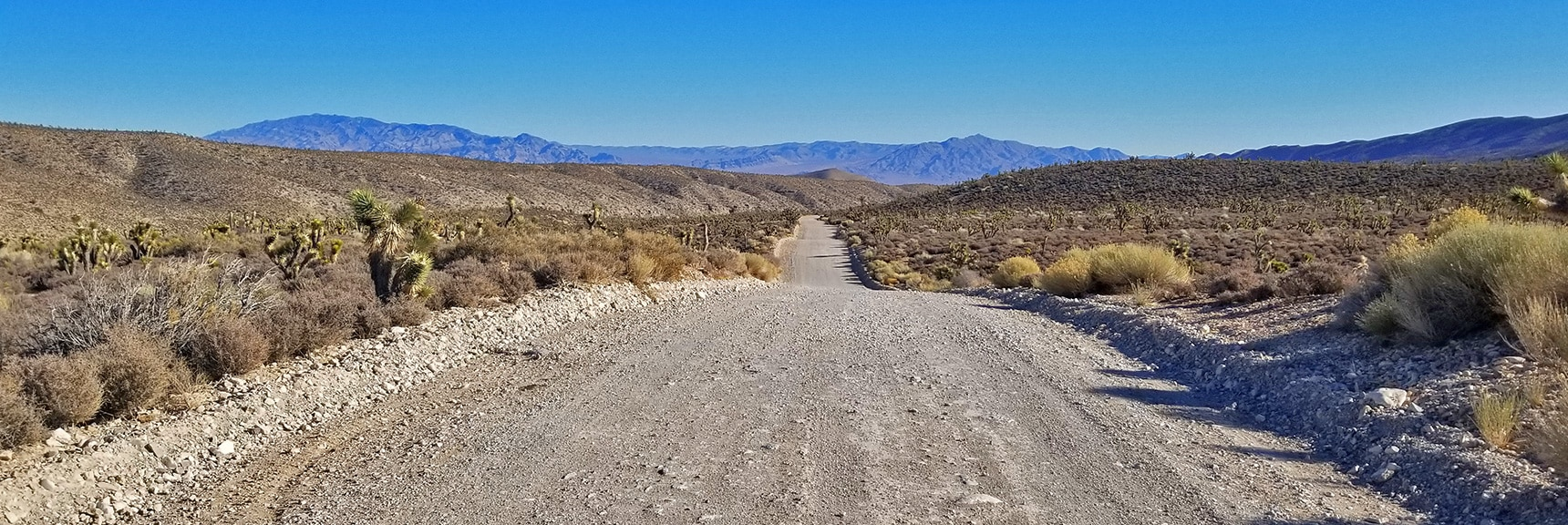 View Back Down Lower Harris Springs Rd Toward Sheep Range and Gass Peak   Harris Springs Rd, Harris Mountain Rd   Spring Mountains Wilderness, Nevada