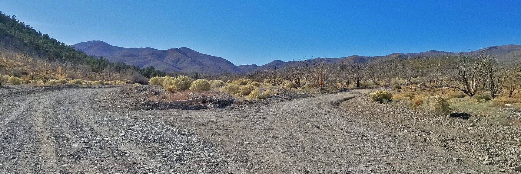 Right Turn Onto Harris Mountain Road. Note the Burn Area.   Harris Springs Rd, Harris Mountain Rd   Spring Mountains Wilderness, Nevada