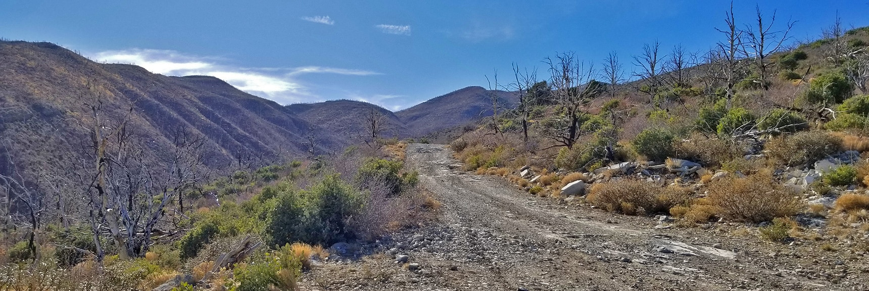 Heading Up Harris Mountain Rd Toward Harris Mt. Skirting Canyon on Left.   Harris Springs Rd, Harris Mountain Rd   Spring Mountains Wilderness, Nevada