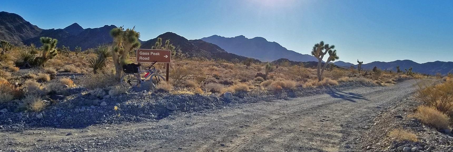 View Down Gass Peak Road, Gass Peak in Background | Lower Mormon Well Road | Sheep Range, Desert National Wildlife Refuge, Nevada