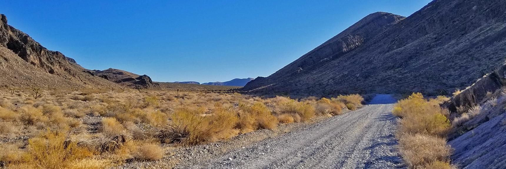 View Through Yucca Gap: Sheep Range to Left, Fossil Ridge to Right   Lower Mormon Well Road   Sheep Range, Desert National Wildlife Refuge, Nevada