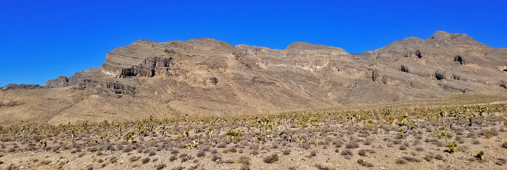 Southern Sheep Range Viewed from Mormon Well Road   Lower Mormon Well Road   Sheep Range, Desert National Wildlife Refuge, Nevada