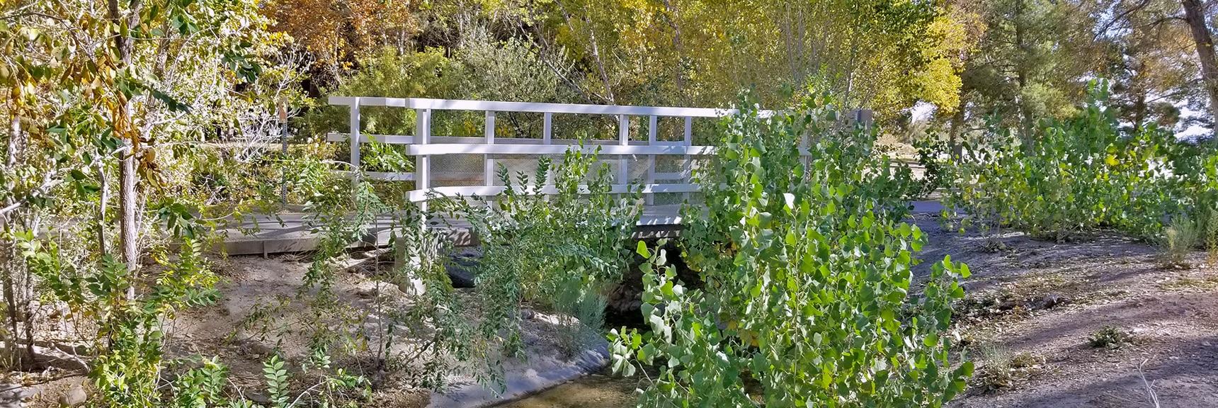 Bridge Over a Stream at Floyd Lamb Park   Centennial Hills Mountain Bike Conditioning Adventure Loop, Las Vegas, Nevada
