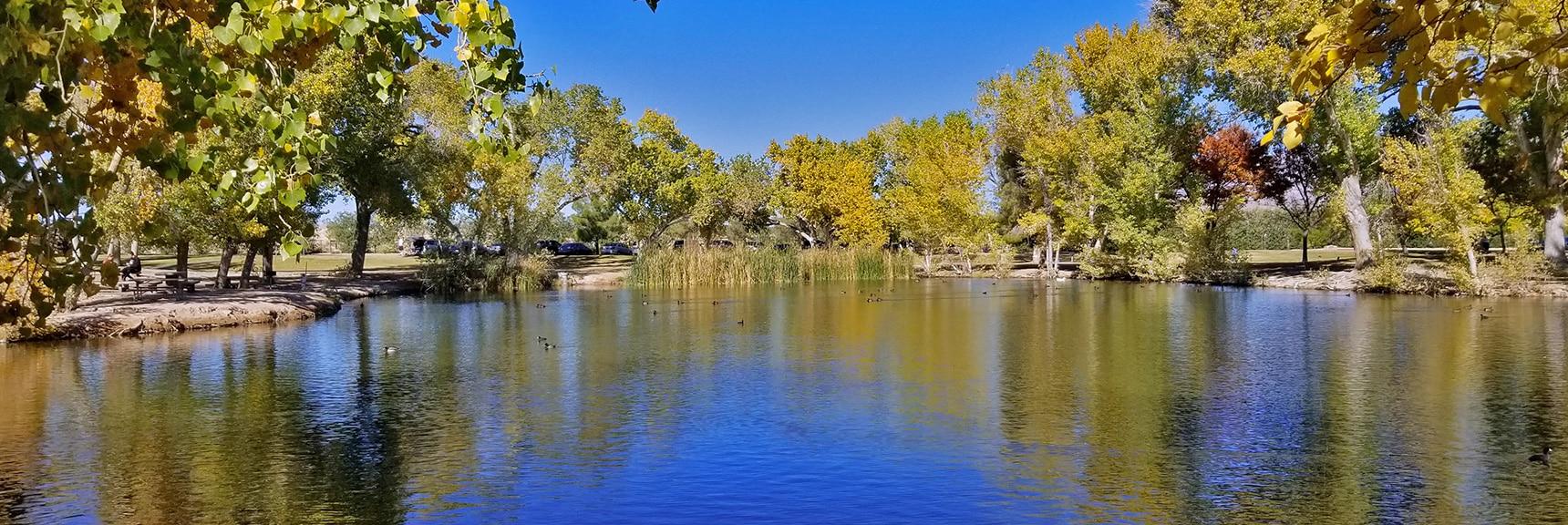 Tule Lake at Floyd Lamb Park   Centennial Hills Mountain Bike Conditioning Adventure Loop, Las Vegas, Nevada