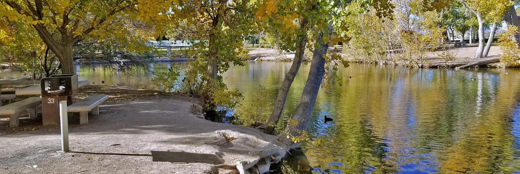 Picnicking on Tule Lake at Floyd Lamb Park   Centennial Hills Mountain Bike Conditioning Adventure Loop, Las Vegas, Nevada