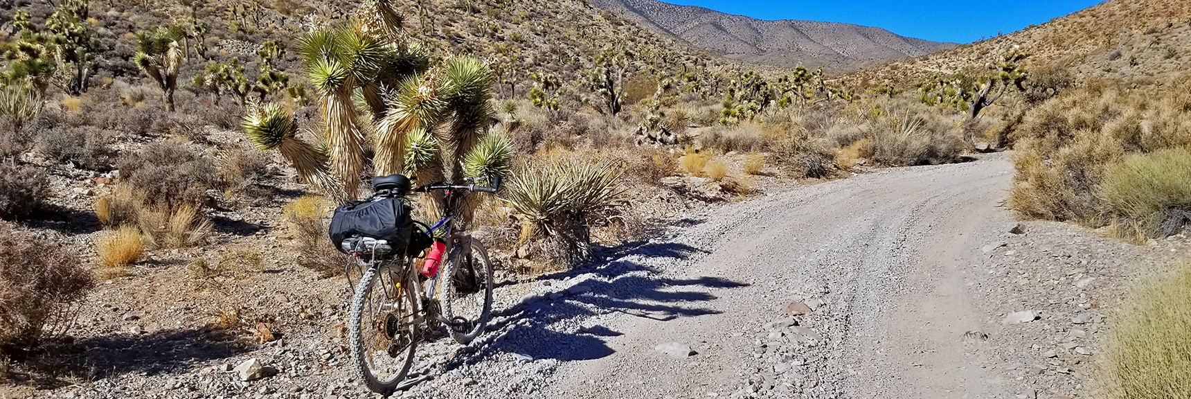 Heading Through Goldwater Canyon on Lucky Strike Road.   Angel Peak via Lucky Strike Road   Mt Charleston Wilderness   Spring Mountains, Nevada