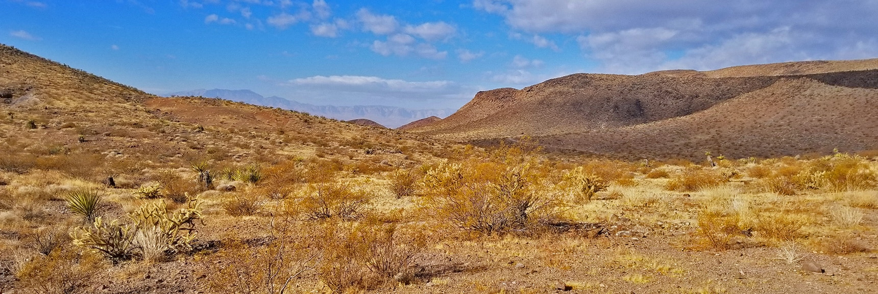 First View Toward the Las Vegas Valley and Across to Red Rock Park Area   McCullough Hills Trail in Sloan Canyon National Conservation Area, Nevada