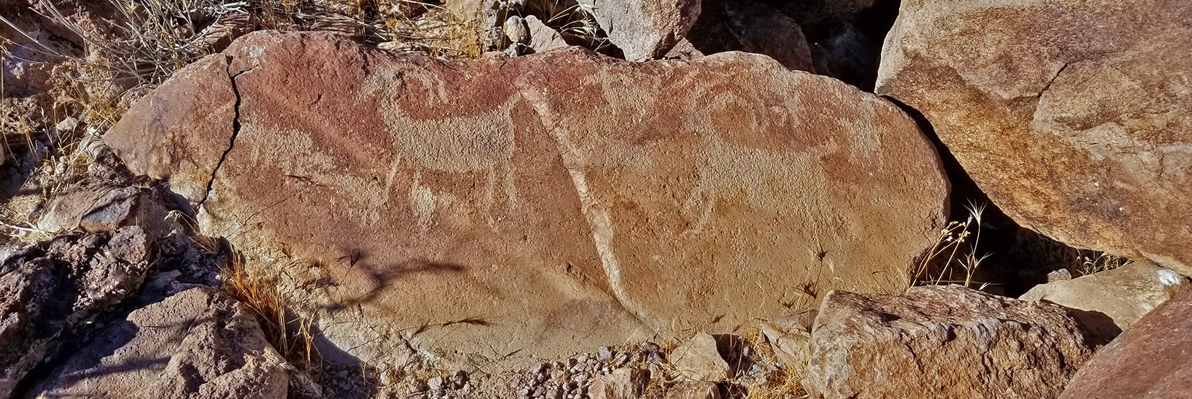Now the Petroglyphs Appear! | Petroglyph Canyon | Sloan Canyon National Conservation Area, Nevada