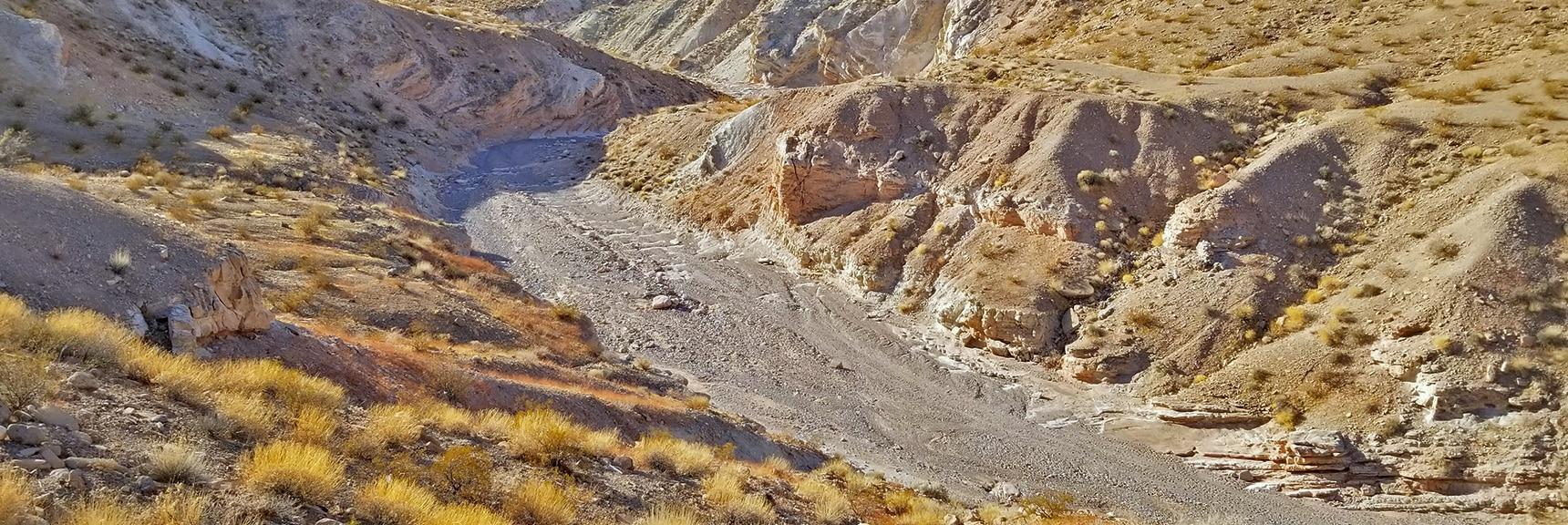 Looking Back Down Anniversary Narrows Run-off Wash   Anniversary Narrows   Muddy Mountains Wilderness, Nevada