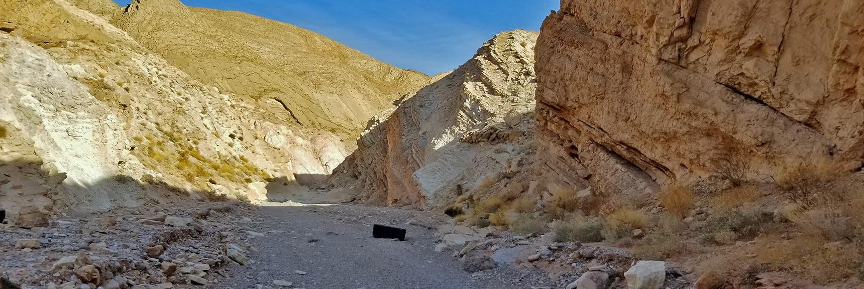 Heading Up Anniversary Narrows Wash   Anniversary Narrows   Muddy Mountains Wilderness, Nevada