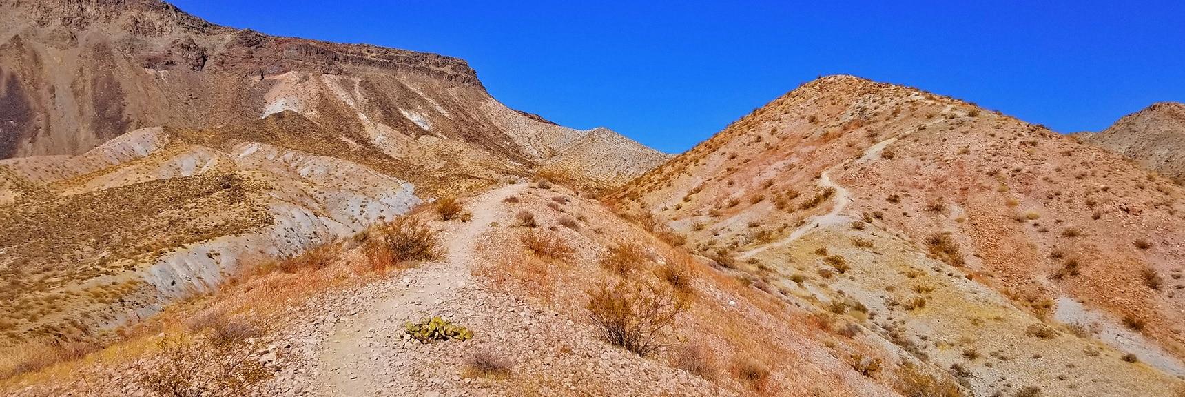 Ascending the High Ridge Trail Toward Fortification Hill   Fortification Hill   Lake Mead National Recreation Area, Arizona