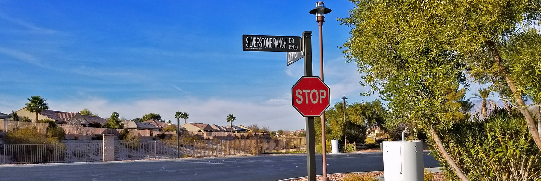 Silverstone Ranch Dr and Monte Viso Dr. Entrance of Palms Estates | Snapshot of Las Vegas Northern Growth Edge on January 3, 2021