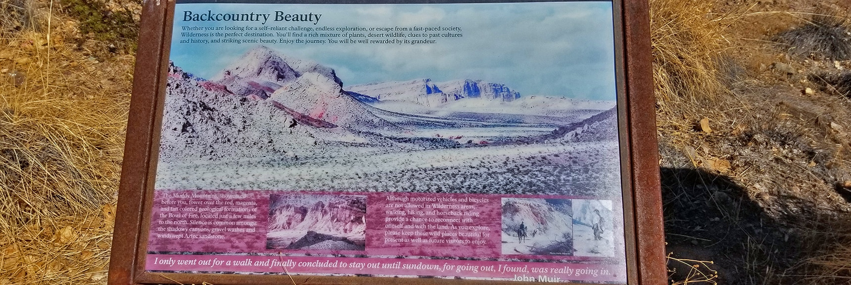 Interpretive Display of Wonders of Back Country Around Callville Bay   Callville Summit Trail   Lake Mead National Recreation Area, Nevada