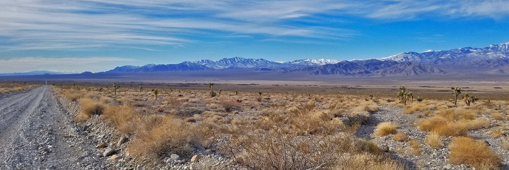 La Madre Mountains Wilderness from Alamo Road   Cow Camp Road   Sheep Range   Desert National Wildlife Refuge, Nevada