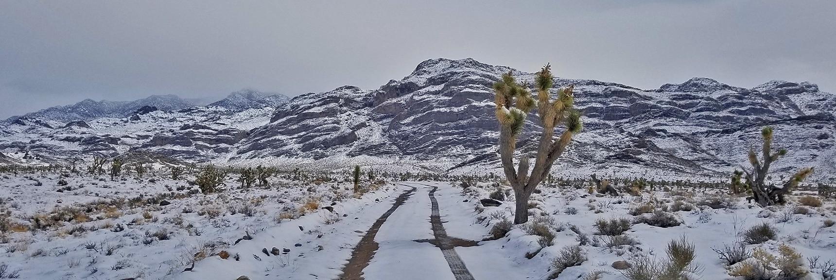 Traveling Upper Cow Camp Road Toward Its End   Cow Camp Road   Sheep Range   Desert National Wildlife Refuge, Nevada