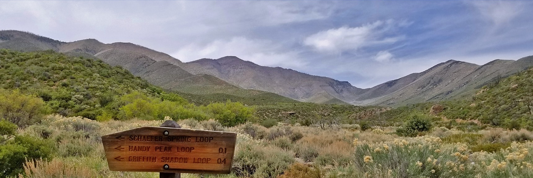 Griffith Peak from Lovell Canyon | La Madre Mountains Wilderness, Nevada