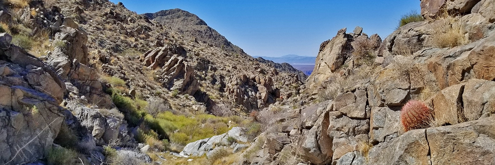 View Down Upper Horse Thief Canyon to Lake Mead and Beyond.   Horse Thief Canyon Loop   Mt. Wilson   Black Mountains   Lake Mead National Recreation Area, Arizona