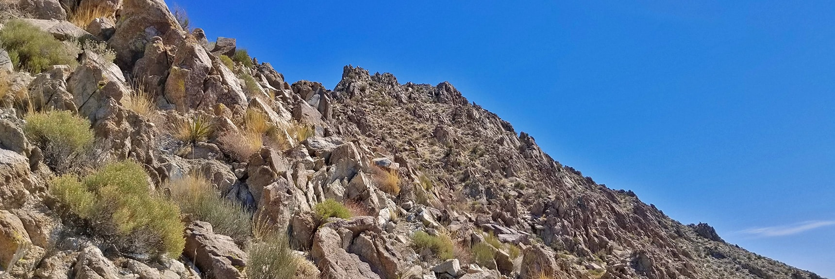 Mt. Wilson Summit from Summit Approach Ridge.   Horse Thief Canyon Loop   Mt. Wilson   Black Mountains   Lake Mead National Recreation Area, Arizona