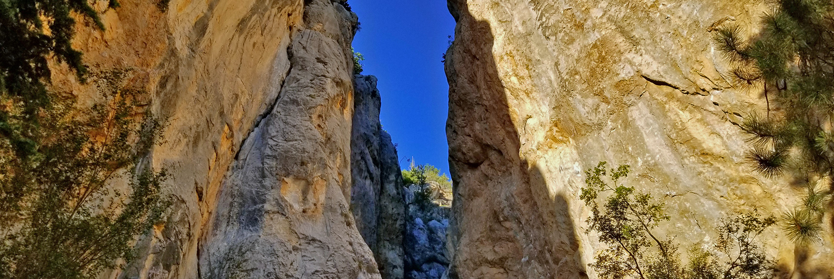 Robbers Roost | Mt Charleston Wilderness | Spring Mountains, Nevada