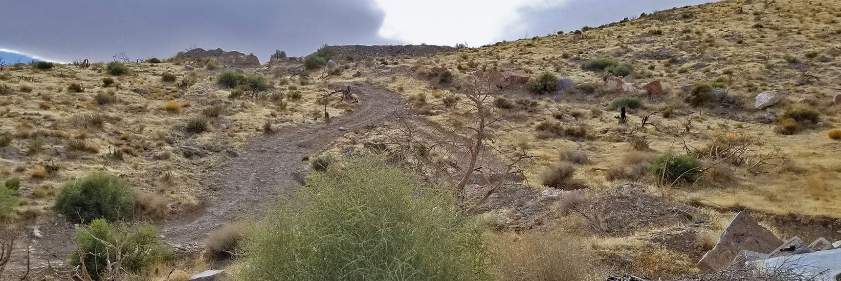 Gated Area Bypass Route | Potosi Mountain Spring Mountains Nevada