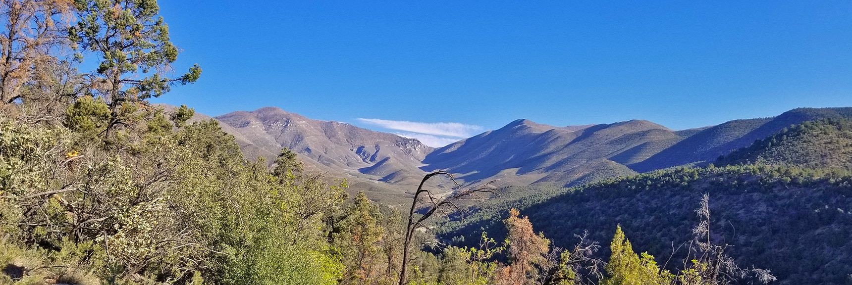High View of Lovell Canyon, Griffith Peak, Harris Mt. and Saddle. | Harris Mountain from Lovell Canyon Nevada