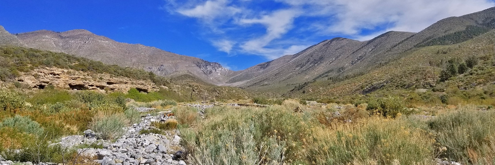 Beginning of Lovell Canyon Ascent Through Large Rocks and Brush | Harris Mountain from Lovell Canyon Nevada