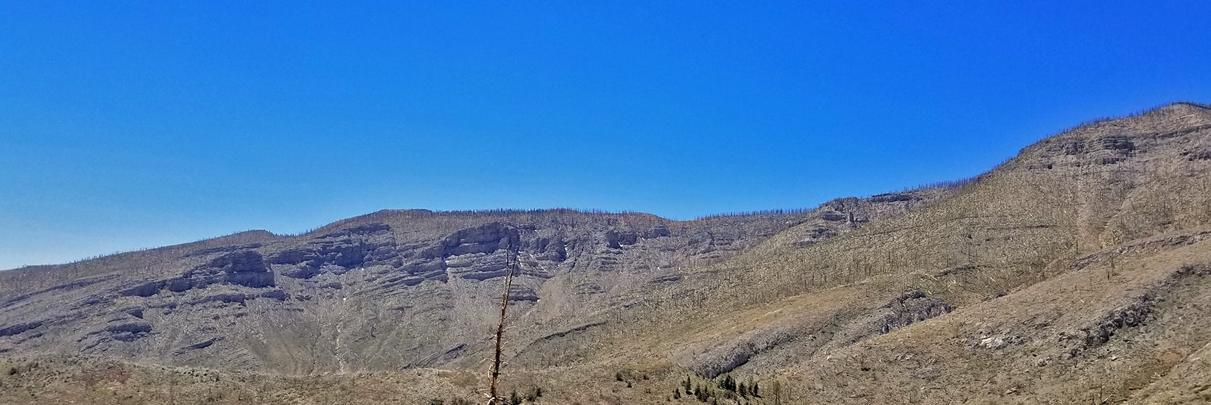 Upper Sexton Ridge from 8,300ft East Side of Lovell Canyon | Harris Mountain from Lovell Canyon Nevada