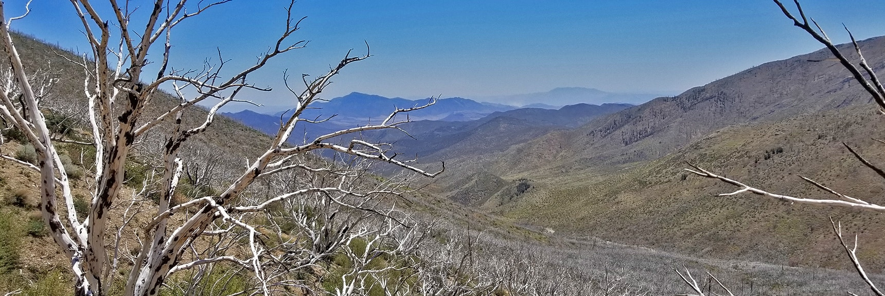 View Down Lovell Canyon to Potosi Mt. from 8,300ft East Side of Lovell Canyon | Harris Mountain from Lovell Canyon Nevada