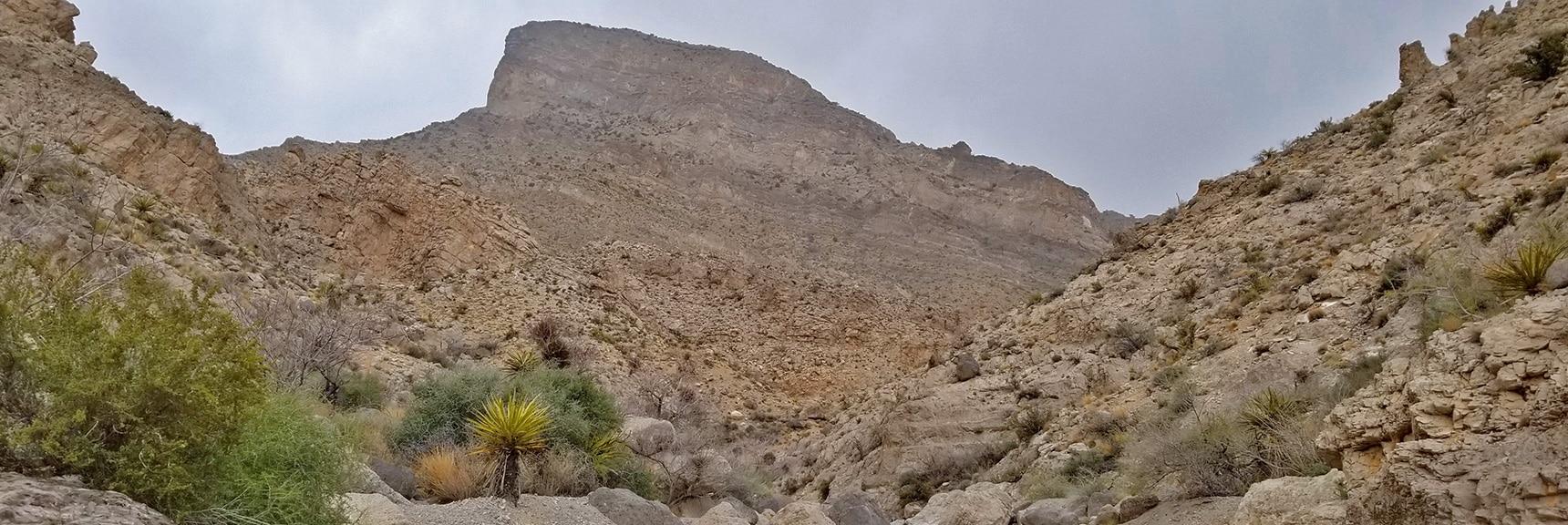 Turtlehead Peak from Rattlesnake Trail in gateway Canyon | Kraft Mountain Loop | Calico Basin, Nevada